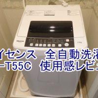 Hisense HW-T55C